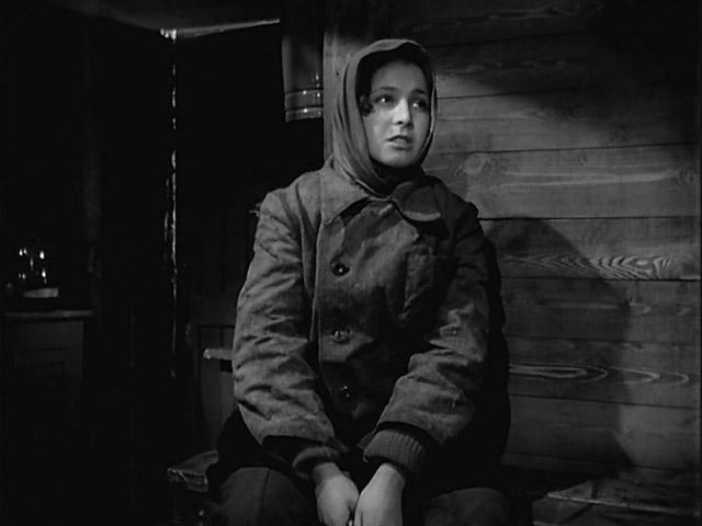 скачать фильм в степной тиши 1959 торрент